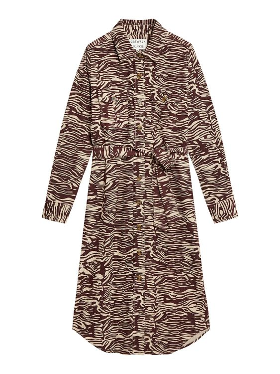 Catwalk Junkie Dress Electric Zebra