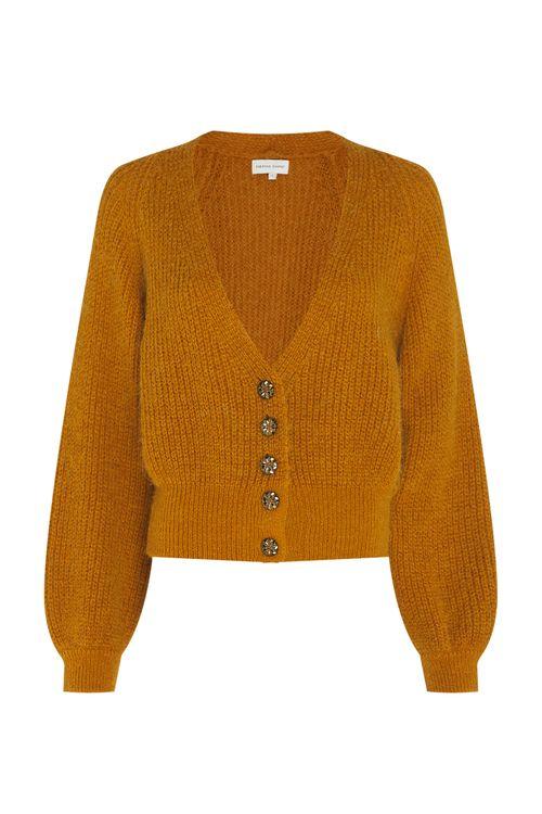 Fabienne Chapot Vest Starry