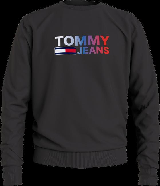 Tommy Hilfiger Sweater DM0DM10202